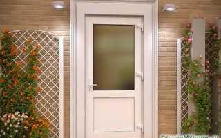 Пластиковые двери в дом