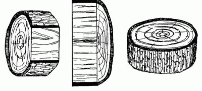 Свойство древесины