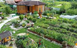 Дизайнерское решение по созданию садовых дорожек