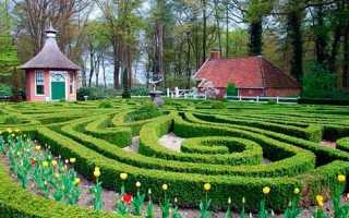 Садовые лабиринты на участке: участие в сказке берут только взрослые