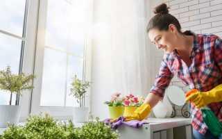 Избавиться от пыли в квартире