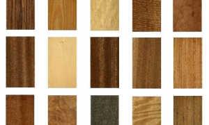 Экзотическая древесина